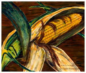 Ear of Iowa Corn, watercolor by Marion Gunderson, 1949